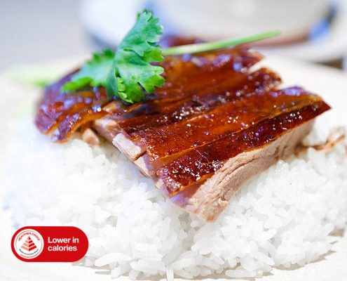 Dian Xiao Er Herbal Roast Duck Meat Rice